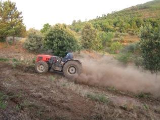 Traktor beim Finca räumen